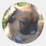 Pegatina adorable del perrito