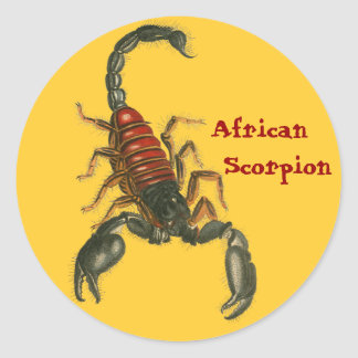 Pegatina africano del escorpión