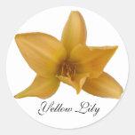 Pegatina amarillo del lirio