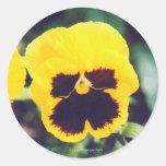 Pegatina amarillo del pensamiento