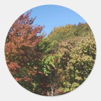 Pegatina azotado por el viento de los árboles