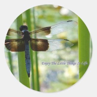 Pegatina azul de la libélula