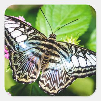 Pegatina azul de la mariposa de las podadoras