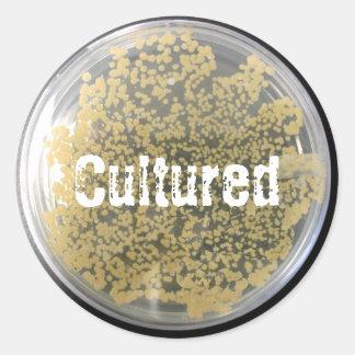 Pegatina bacteriano de la placa de cultura