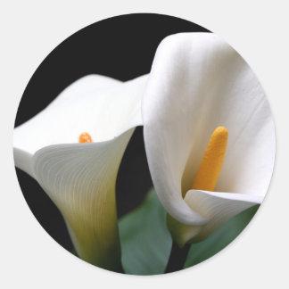 Pegatina blanco de la flor de la cala