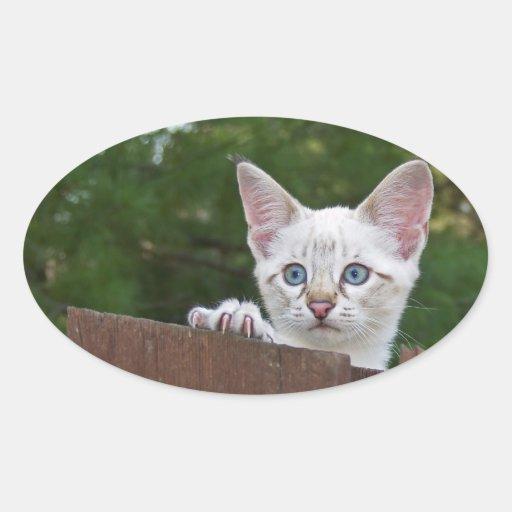 Pegatina blanco del óvalo del gato de la sabana