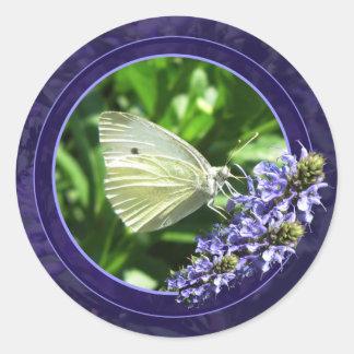 Pegatina blanco enmarcado púrpura de la mariposa