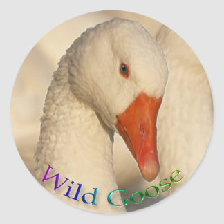 Pegatina blanco salvaje de la fauna del pájaro del