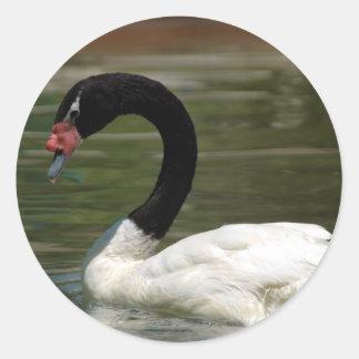 Pegatina blanco y negro del cisne