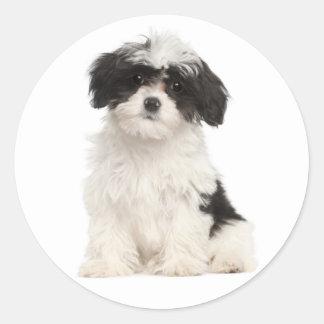 Pegatina blanco y negro del perro de perrito de pegatina redonda