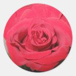 Pegatina color de rosa