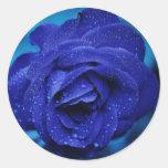 Pegatina color de rosa azul hermoso
