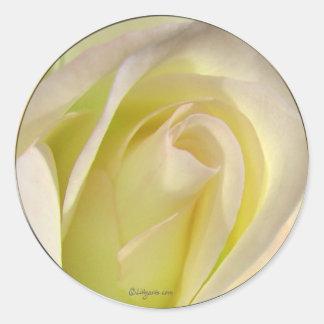 Pegatina color de rosa beige amarillo claro del