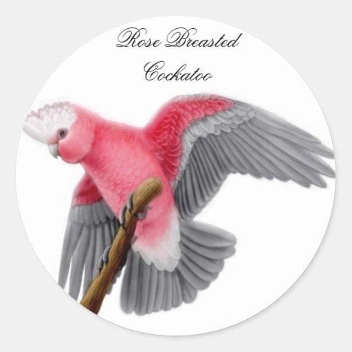 Pegatina color de rosa del Cockatoo de Breasted