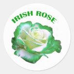 Pegatina color de rosa irlandés