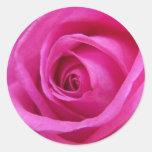 Pegatina color de rosa rosado brillante