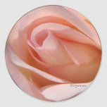Pegatina color de rosa rosado del sobre del boda