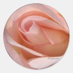 Pegatina color de rosa rosado del sobre del boda d