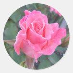 Pegatina color de rosa rosado menudo