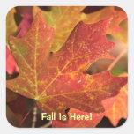 Pegatina: Colores de la caída (cuadrado)