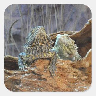 Pegatina con dos lagartos curiosos