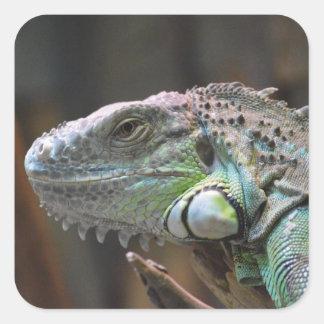 Pegatina con la cabeza del lagarto colorido de la