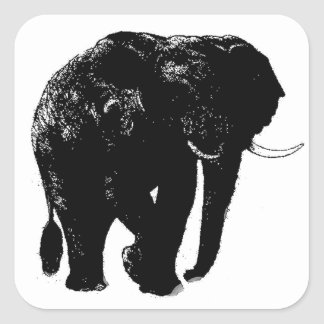 Pegatina cuadrado del elefante