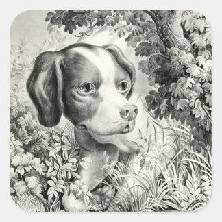 Pegatina cuadrado del perro