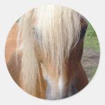 Pegatina cuarto del caballo del Palomino