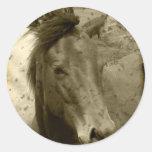 Pegatina de antaño de la fotografía del caballo de