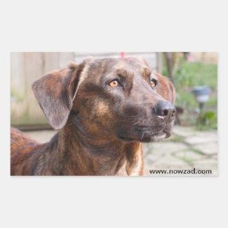 Pegatina de Brin del perro del rescate de Nowzad