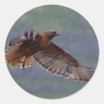 Pegatina de Eagle de oro