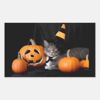 Pegatina de Halloween con las calabazas y el gato