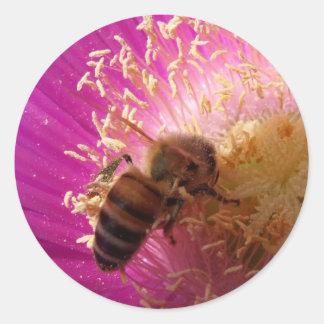 Pegatina de la abeja de la miel