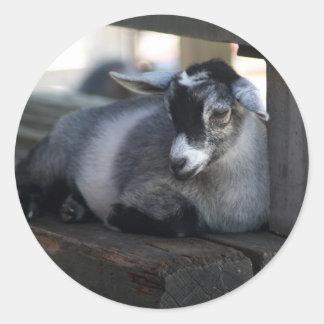 Pegatina de la cabra