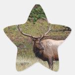 Pegatina de la estrella de los alces
