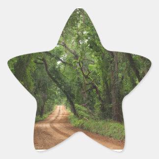 Pegatina de la estrella del fondo de la carretera