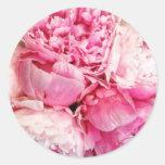 Pegatina de la flor del Peony del rosa en colores