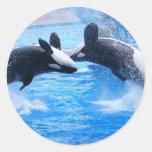 Pegatina de la foto de la ballena