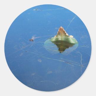 Pegatina de la hoja del lirio de agua