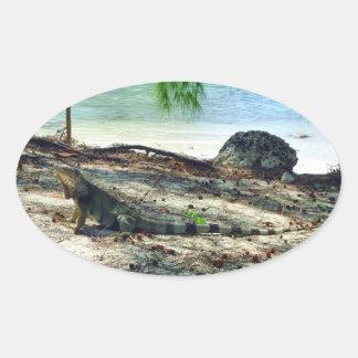 Pegatina de la iguana de Bahama
