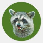 Pegatina de la imagen del mapache