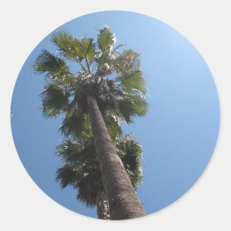 Pegatina de la palmera
