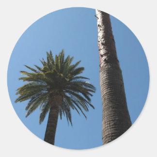 Pegatina de la palmera de California