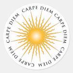 Pegatina de la placa de libro de Sun Carpe Diem