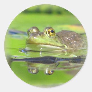 Pegatina de la rana verde
