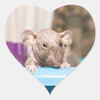 pegatina de la rata