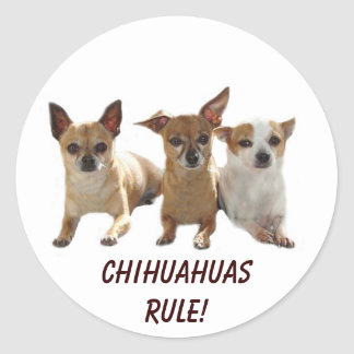 Pegatina de la regla de las chihuahuas