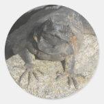 Pegatina de la roca del lagarto