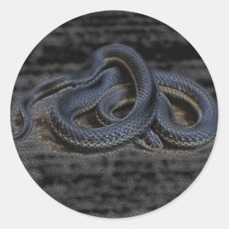 Pegatina de la serpiente de liga